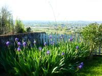 French property for sale in ST EMILION, Gironde - €399,000 - photo 3