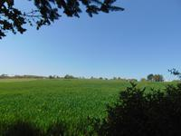 French property for sale in GUENIN, Morbihan - €77,000 - photo 10