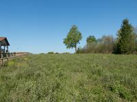 French property for sale in AUGIGNAC, Dordogne - €26,000 - photo 3
