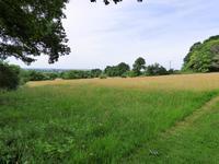 French property for sale in VILLAINES LA JUHEL, Mayenne - €498,200 - photo 6