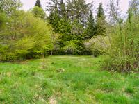 French property for sale in GIAT, Puy de Dome - €40,000 - photo 9