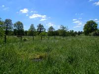 French property for sale in MAGNAC LAVAL, Haute Vienne - €136,250 - photo 3