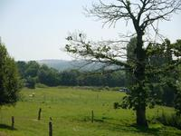 French property for sale in PLESSALA, Cotes d Armor - €265,000 - photo 10