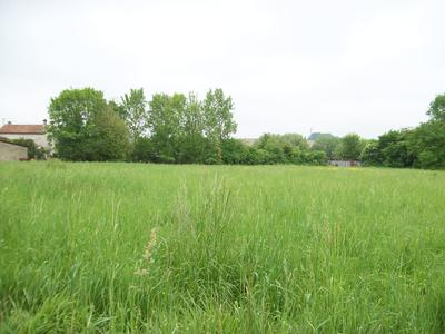 French property, houses and homes for sale in AIGRE Charente Poitou_Charentes