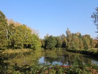 lacs à vendre à CHAMPEAUX, Ille_et_Vilaine, Bretagne, avec Leggett Immobilier