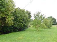 Terrain à vendre à  en Charente - photo 4