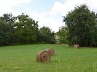 Terrain à vendre à  en Charente - photo 9