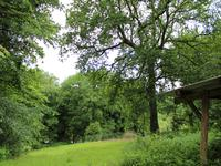 French property for sale in BULAT PESTIVIEN, Cotes d Armor - €82,500 - photo 9