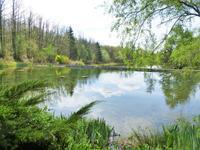lacs à vendre à LA CHAPELLE MONTBRANDEIX, Haute_Vienne, Limousin, avec Leggett Immobilier