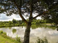 French property for sale in MIALET, Dordogne - €336,000 - photo 9