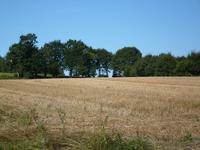 French property for sale in REMINIAC, Morbihan - €36,000 - photo 6