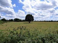 French property for sale in PRE EN PAIL, Mayenne photo 1