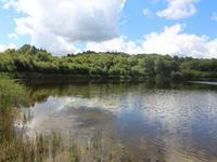 Lacs à vendre à GUISCRIFF en Morbihan - photo 1