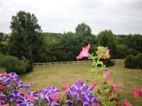 French property for sale in CLECY, Calvados - €249,995 - photo 9