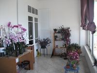French property for sale in CASTELSARRASIN, Tarn et Garonne - €224,700 - photo 9