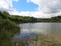 Lacs à vendre à GUISCRIFF en Morbihan - photo 2