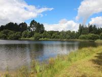 Lacs à vendre à GUISCRIFF en Morbihan - photo 6