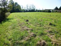 Terrain à vendre à VILLEREAL en Lot et Garonne - photo 5