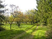 French property for sale in NEGRONDES, Dordogne - €178,690 - photo 10