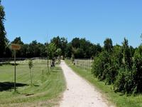French property for sale in BENON, Charente Maritime - €550,000 - photo 7