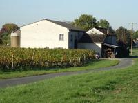 Maison à vendre à LAMOTHE MONTRAVEL en Dordogne - photo 5