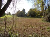 Terrain à vendre à BRANNE en Gironde - photo 4