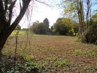 Terrain à vendre à BRANNE en Gironde - photo 6
