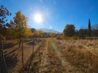 French property for sale in PRADES, Pyrenees Orientales - €65,000 - photo 3