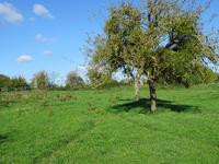 French property for sale in RI, Orne - €166,000 - photo 4