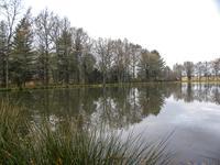 French property for sale in ST PAUL LA ROCHE, Dordogne - €36,000 - photo 9