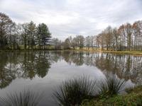 French property for sale in ST PAUL LA ROCHE, Dordogne - €36,000 - photo 10