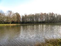 French property for sale in ST PAUL LA ROCHE, Dordogne - €36,000 - photo 5
