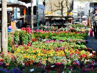 Terrain à vendre à CIVRAY en Vienne - photo 6