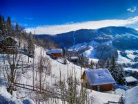 Chalet à vendre à AILLON LE JEUNE en Savoie - photo 2