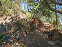 French property for sale in THEOULE SUR MER, Alpes Maritimes - €0 - photo 5