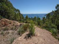French property for sale in THEOULE SUR MER, Alpes Maritimes - €0 - photo 3