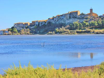 French property, houses and homes for sale in BAGES Aude Languedoc_Roussillon