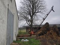 Grange à vendre à MONTAIGUT LE BLANC en Creuse - photo 8