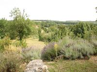 French property for sale in GINALS, Tarn et Garonne - €230,000 - photo 10