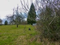 French property for sale in LADIGNAC LE LONG, Haute Vienne - €114,000 - photo 5