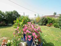 French property for sale in AULNAY, Charente Maritime - €264,290 - photo 2