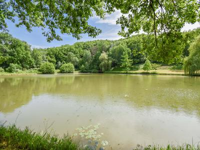 Stunning and rare private lakeside property.