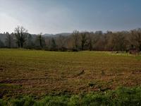 Terrain à vendre à BUSSIERE BADIL en Dordogne - photo 7