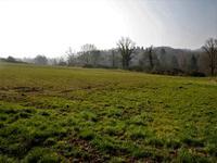 Terrain à vendre à BUSSIERE BADIL en Dordogne - photo 6
