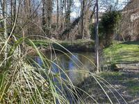 French property for sale in CHALAIS, Charente - €93,500 - photo 3