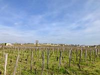 French property for sale in ST EMILION, Gironde - €826,800 - photo 10