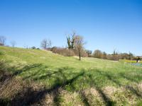 French property for sale in LA TOUR BLANCHE, Dordogne - €30,000 - photo 4