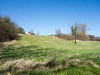 French property for sale in LA TOUR BLANCHE, Dordogne - €30,000 - photo 2