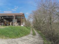 Maison à vendre à MONTPEZAT en Lot et Garonne - photo 3