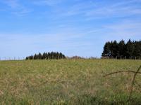 Terrain à vendre à ANGOISSE en Dordogne - photo 4